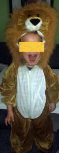 Unverkennbar: ein Löwe