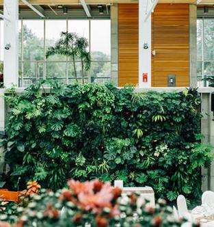 5 zauberhafte einrichtungsideen mit zimmerpflanzen. Black Bedroom Furniture Sets. Home Design Ideas