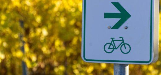 fahrradsitz oder fahrradanhänger