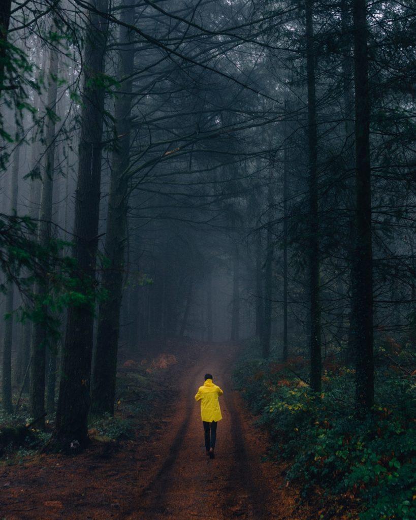 spazierengehen oder joggen